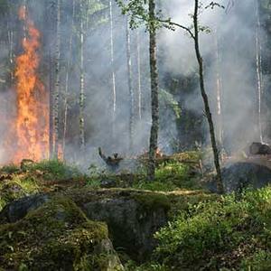 Implementación de torres y central de monitoreo para la detección automática y temprana de incendios forestales.